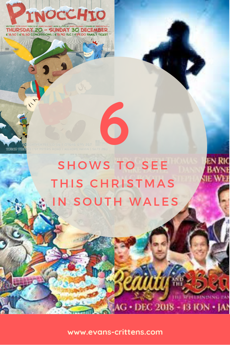 Christmas Shows in South Wales, Six Christmas Shows in South Wales