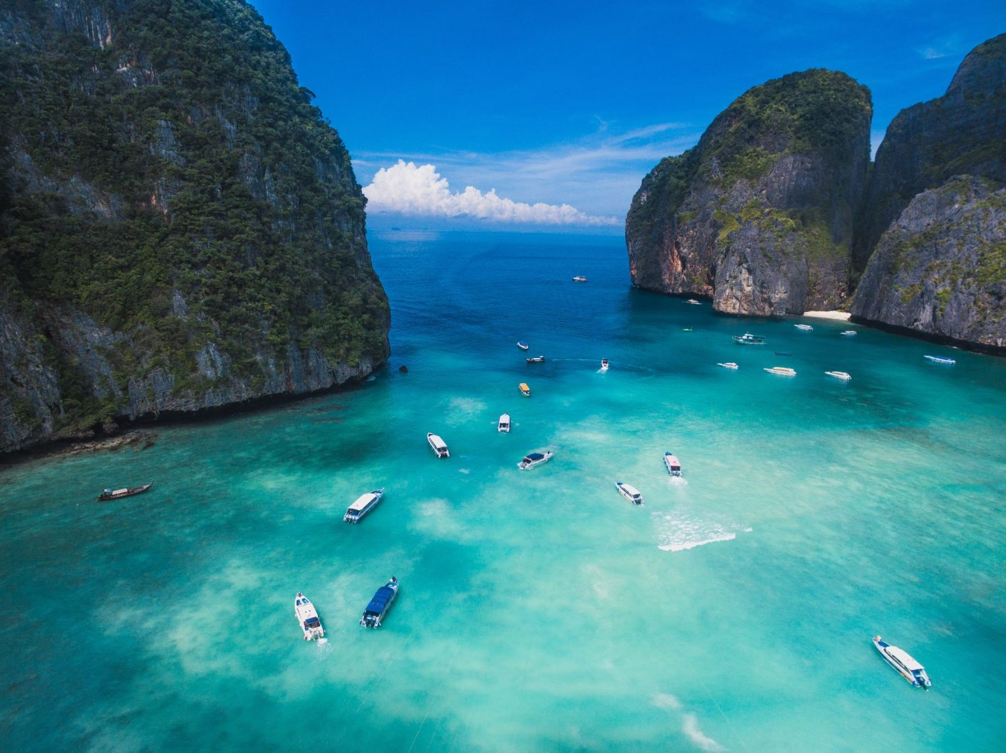 , Travel:  5 Things to Do in Thailand