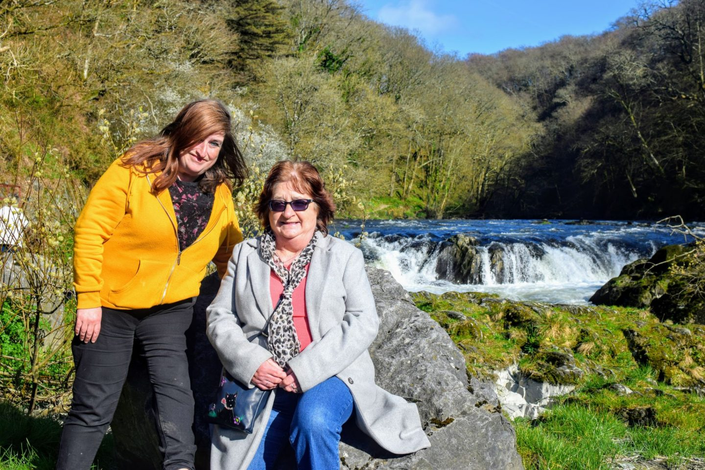 , Snapshots:  Cenarth Falls, Ceredigion, March 2019