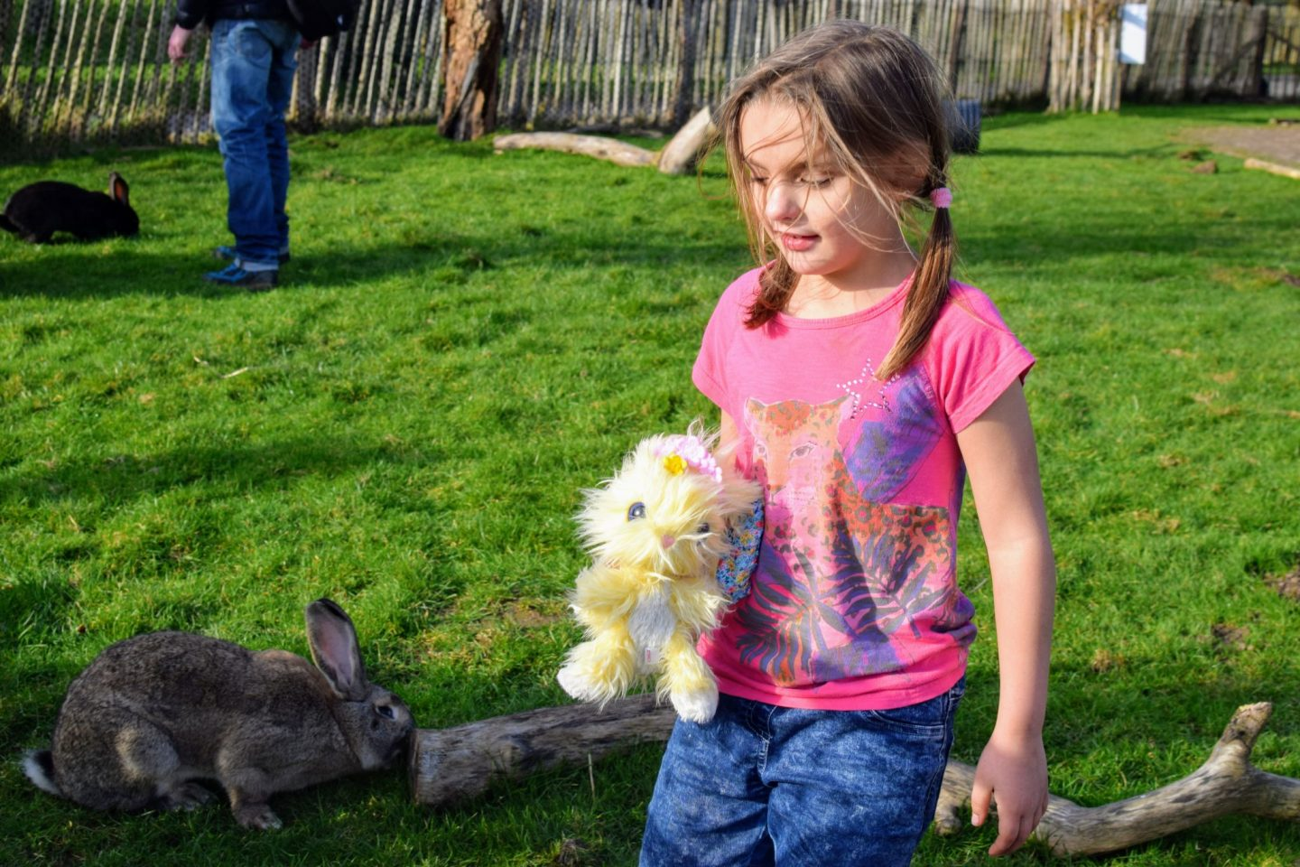 , Our Scruff-a-Luvs Blossom Bunny Reveal and Adventure #Ad – gifted