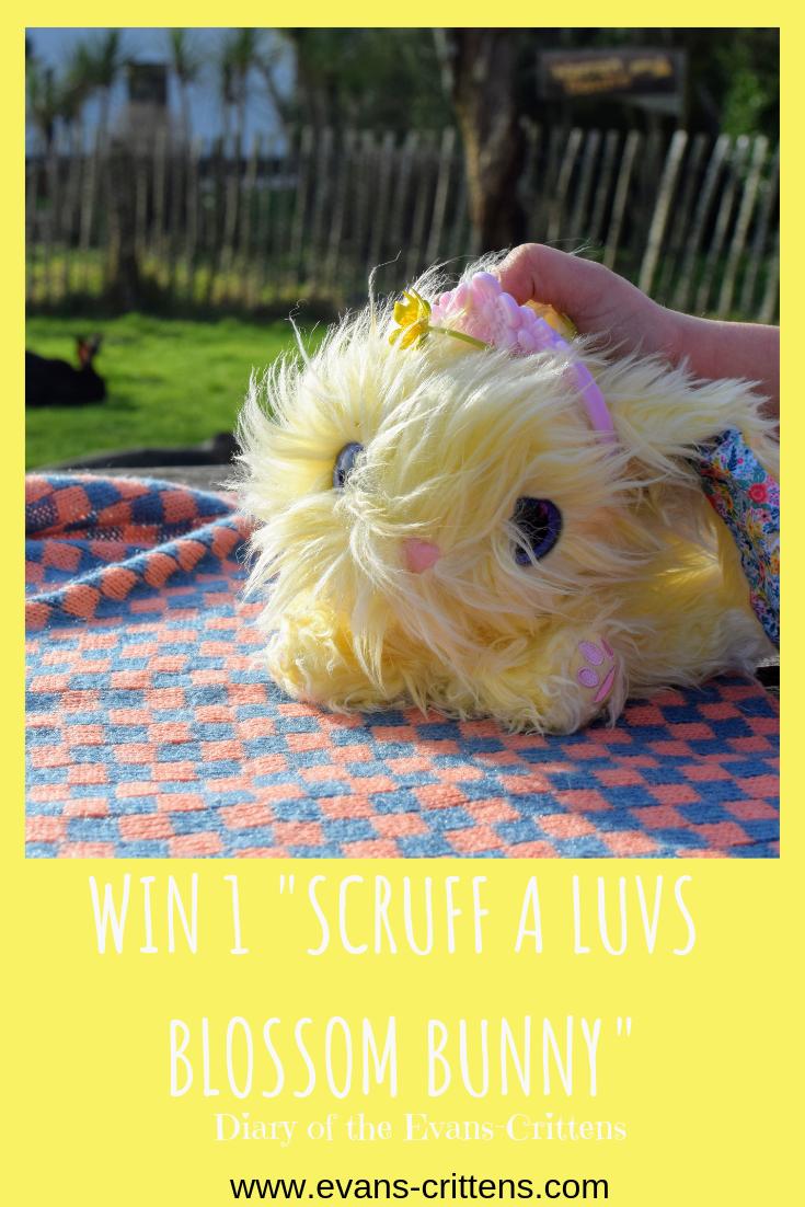 ", Win a Scruff a Luvs ""Blossom Bunnies"" #Ad"
