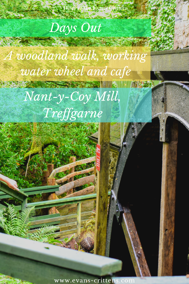 , Nant-y-Coy Mill and Woodland Walk, Treffgarne, Pembrokeshire
