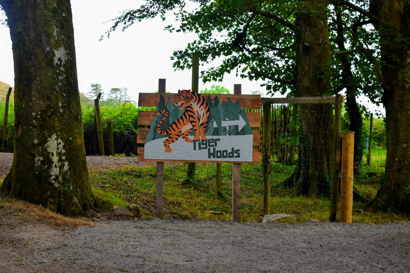 , Pizza and Prosecco at Manor Wildlife Park, Pembrokeshire