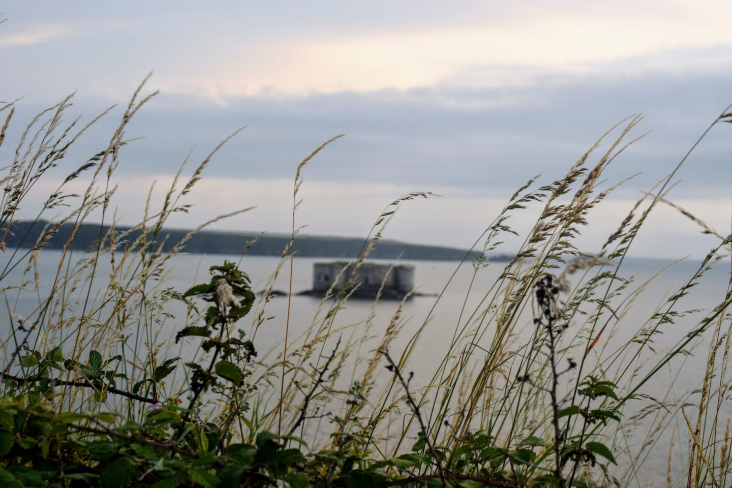 , Picnic on the Beach:  St Thomas Bay, Pembrokeshire