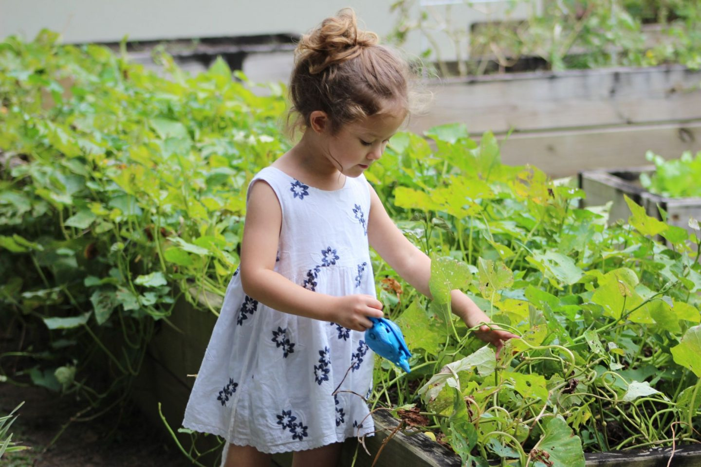 , How Do You Get Kids Involved In Gardening?