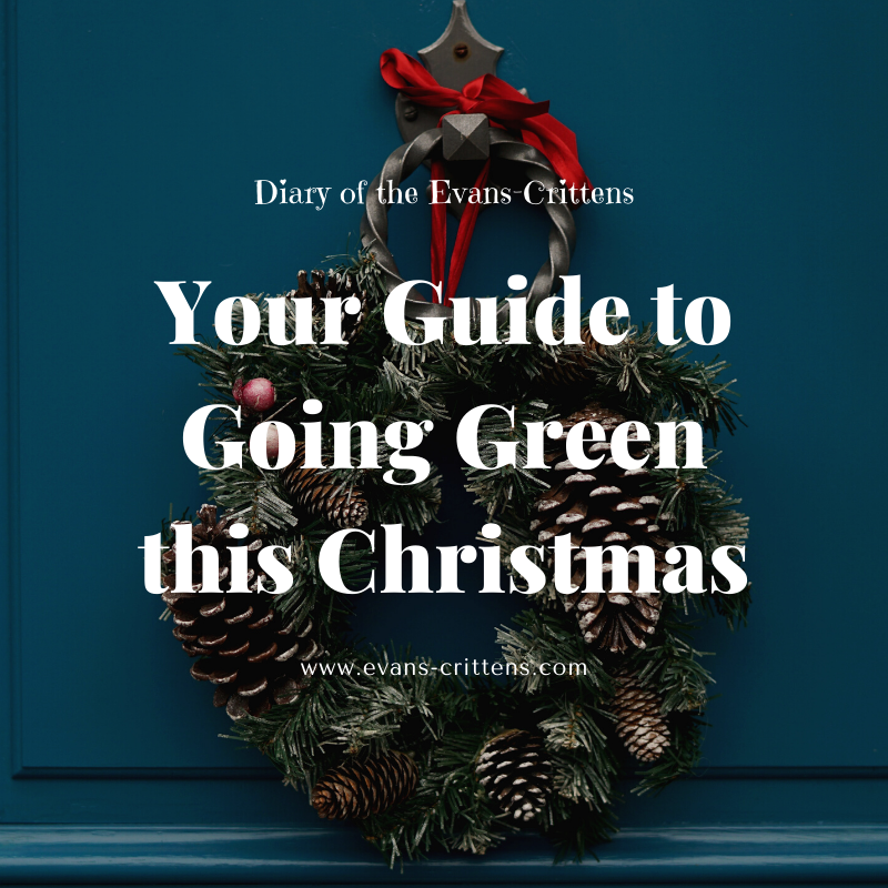 going green this christmas, Your Guide to Going Green this Christmas