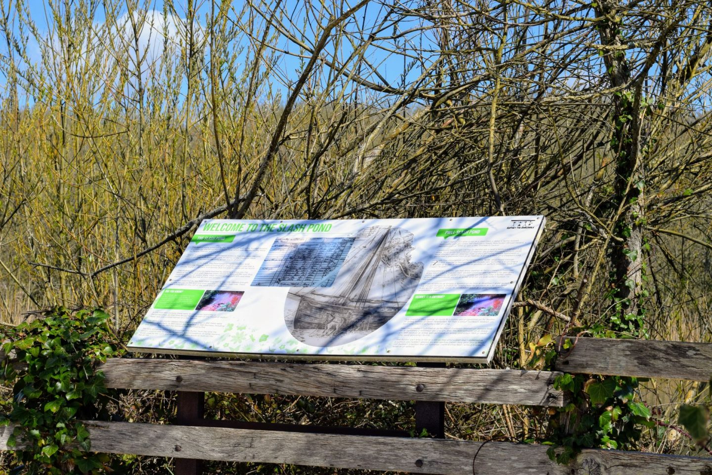 """, Broad Haven """"Support The BoardWalk"""" Nature Trail"""