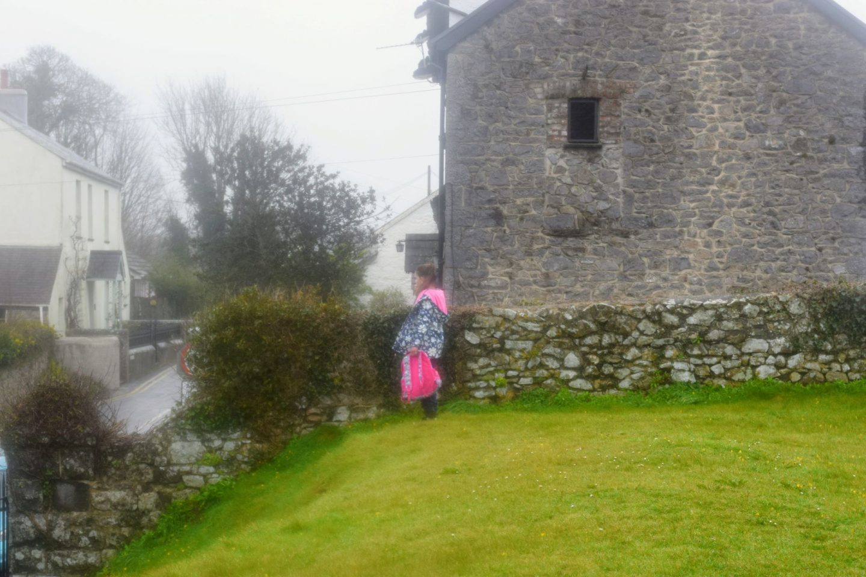 , Carew Castle Millpond Walk, Pembrokeshire