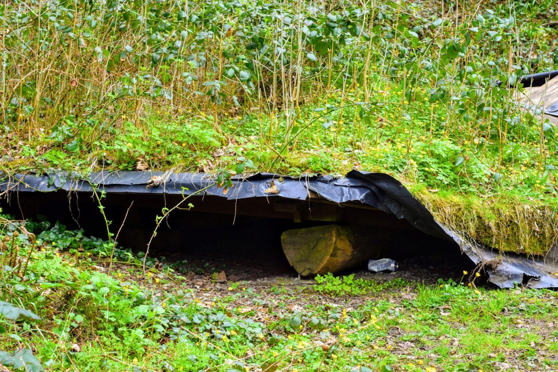 , Castle Pill Woods and Blackbridge Circular Walk, Pembrokeshire