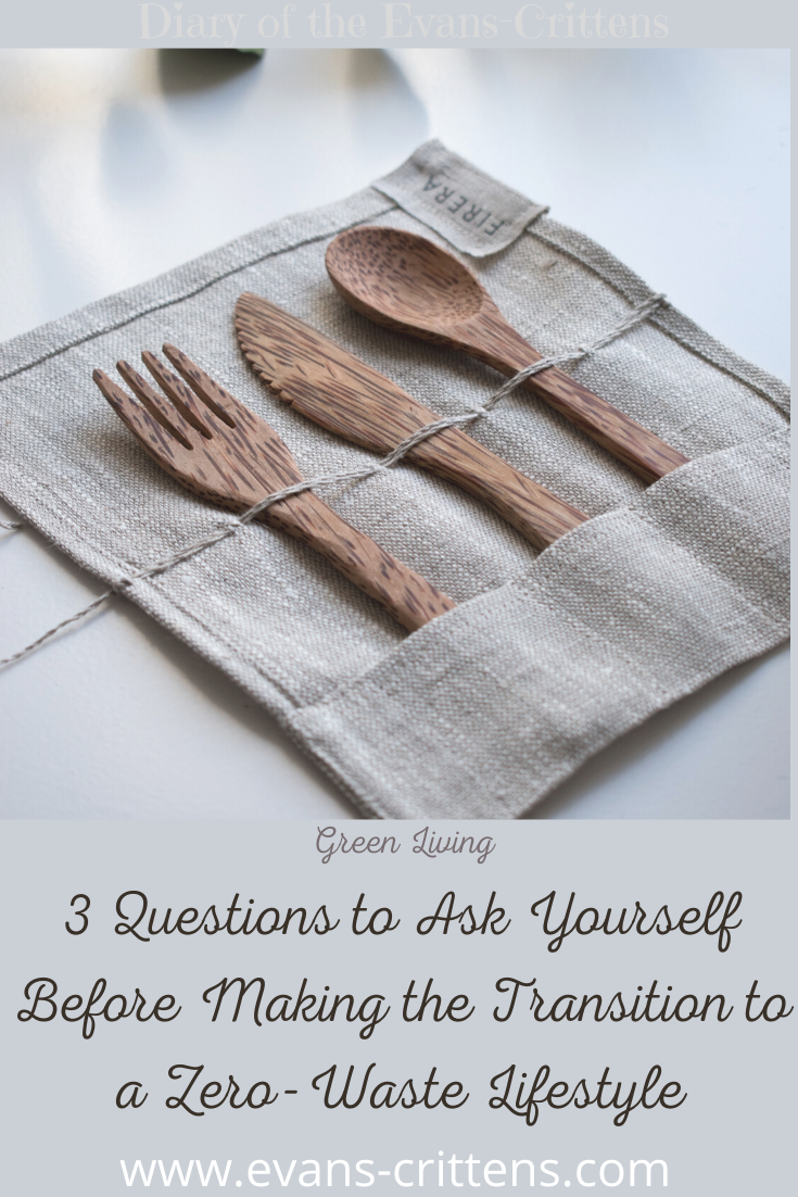 , 3 Questions to Ask Yourself Before Making the Transition to Zero-Waste Lifestyle