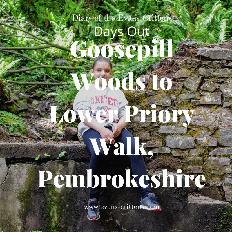 , Goosepill Woods to Lower Priory Walk, Pembrokeshire