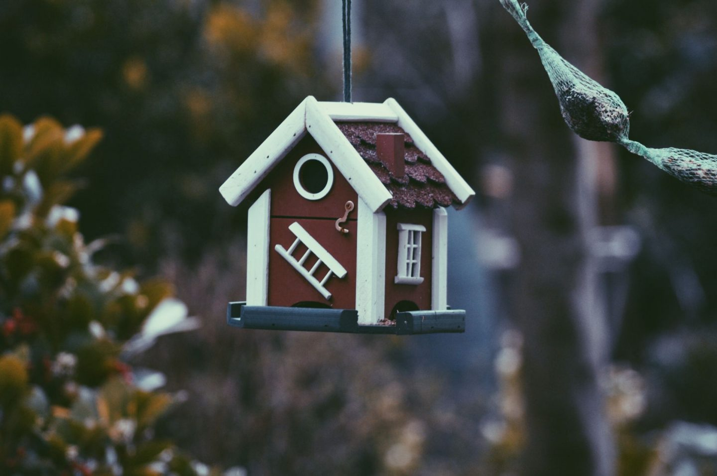 , Common Home Buying Red Flags To Watch Out For