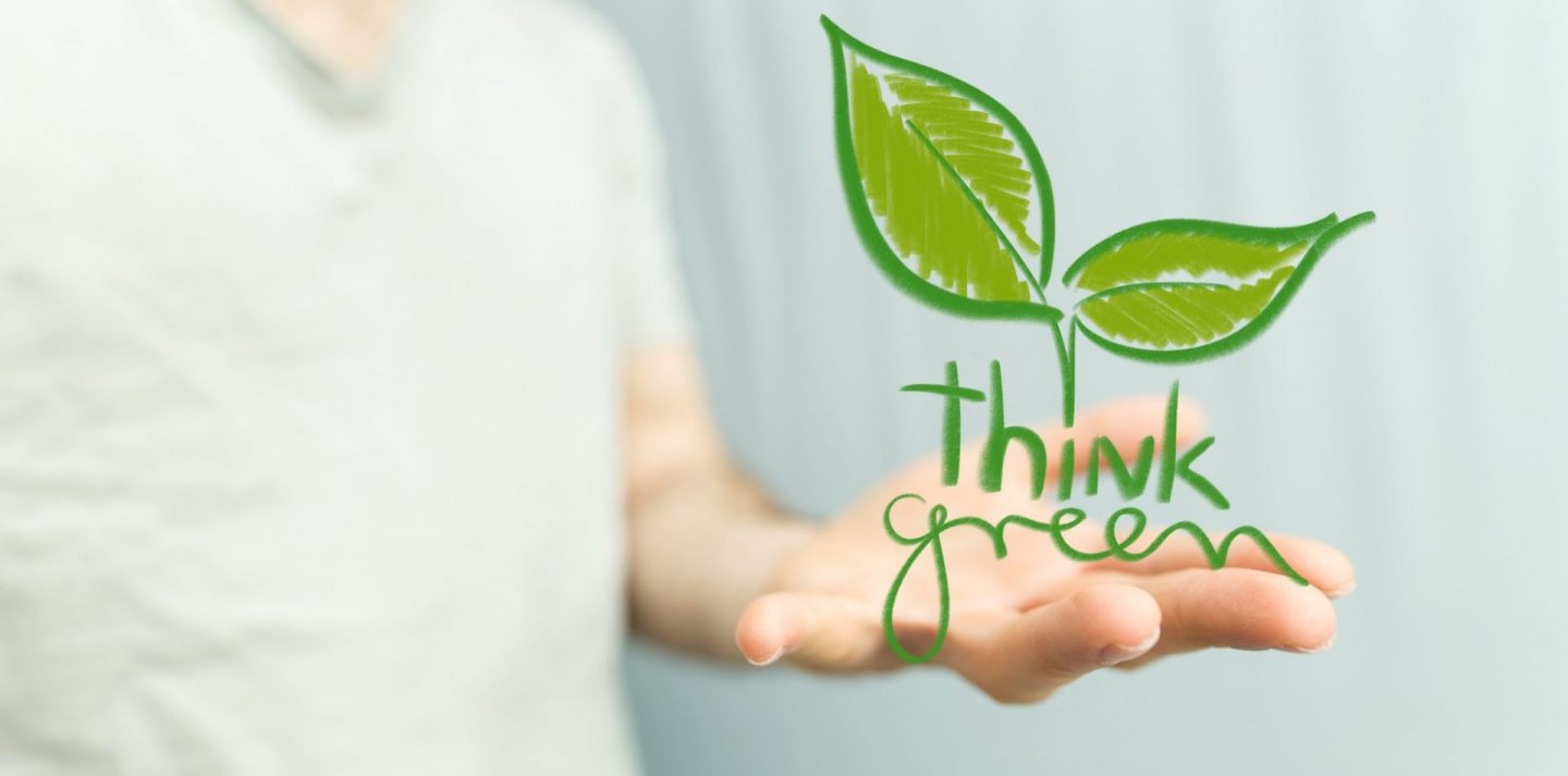 , 3 Easy Ways You Can Be More Earth-Friendly