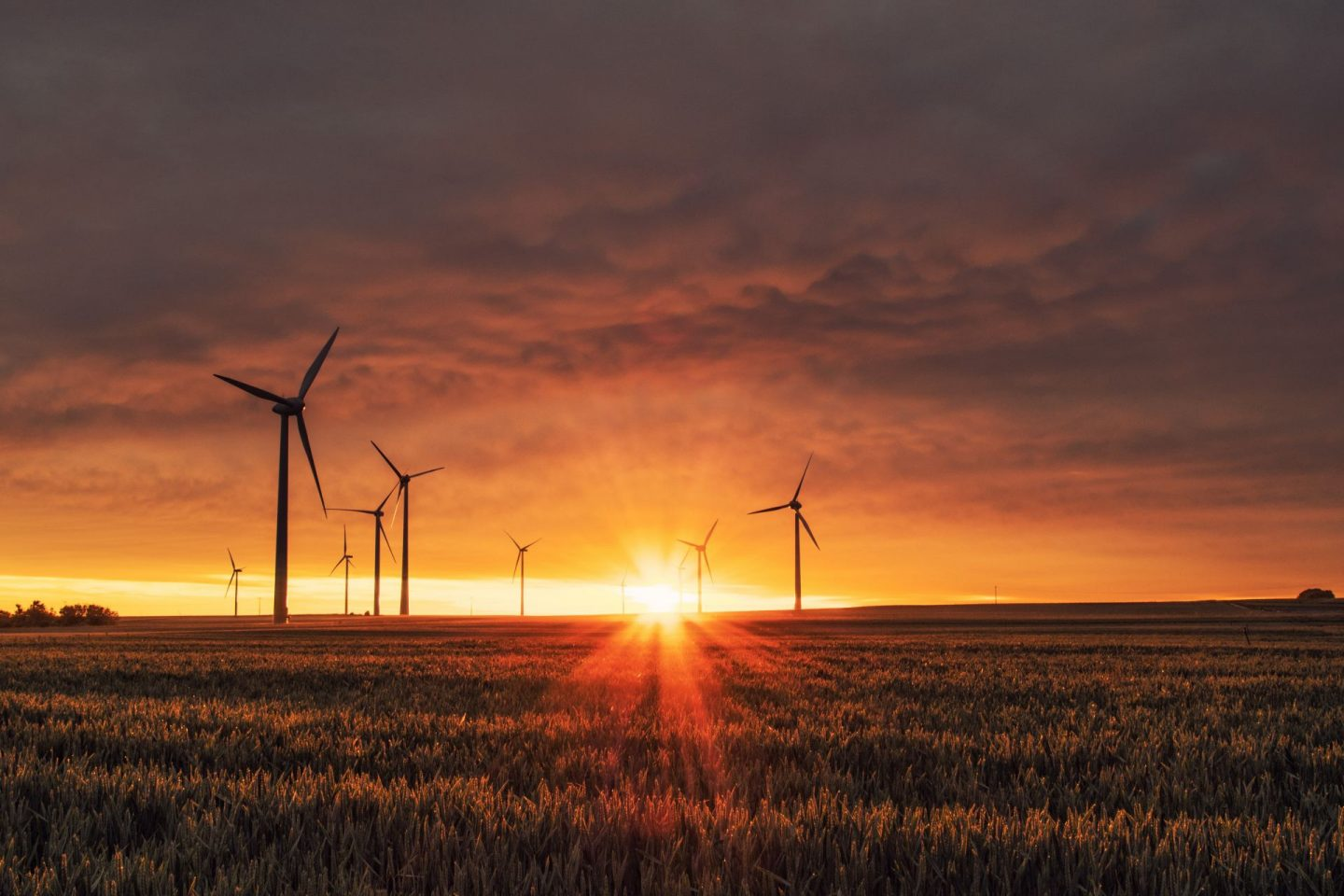 , 4 Smart Investments to a Sustainable Future for Your Household