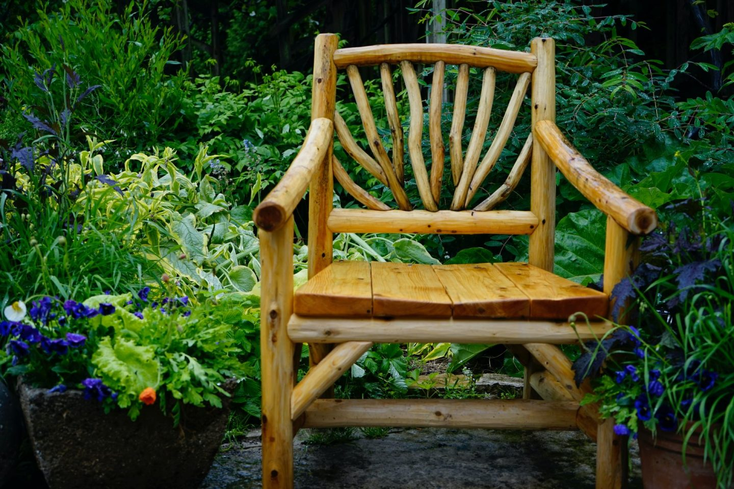 , Ten Ways to Get Your Garden Ready for Spring This Autumn