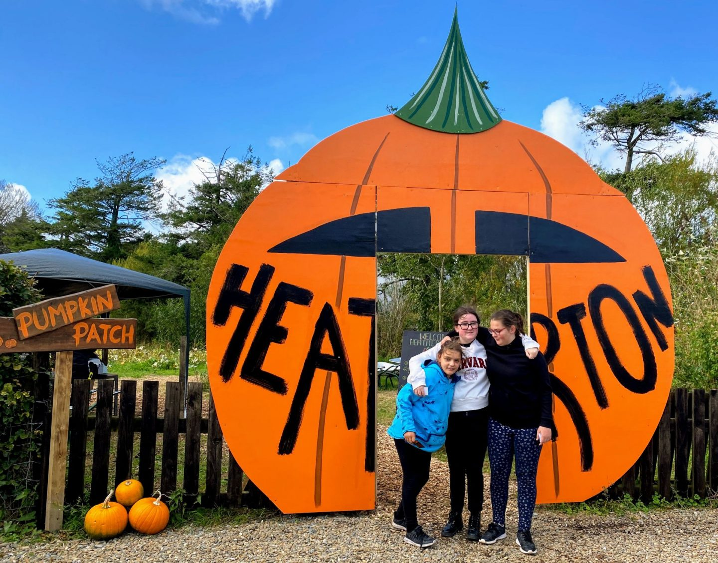 , Pumpkin Picking in Pembrokeshire- 5 Places You Can Pick Your Own Pumpkins in West Wales